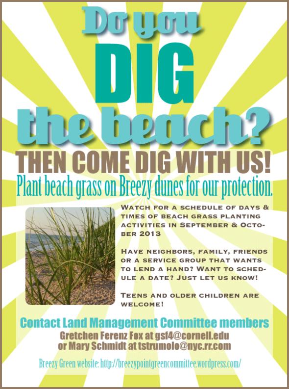 dig-the-beach-FINAL-REV