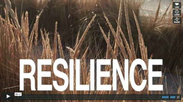 resilience-vimeo