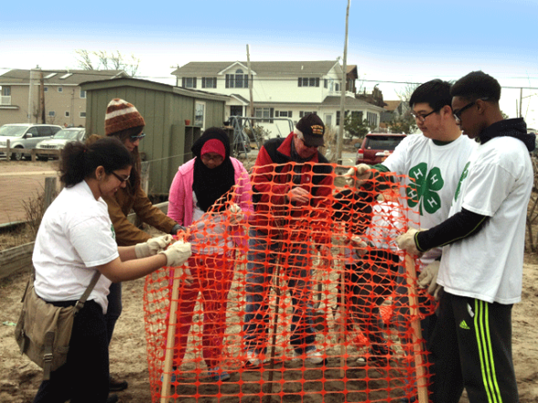 NYC-4-H-Volunteers-Plant-Trees-in-Breezy-Point,-Queens-4-5-14