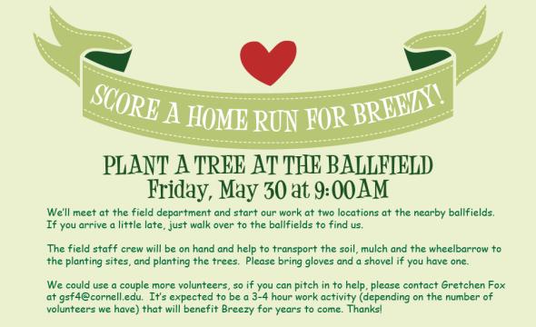 ballfieldtrees